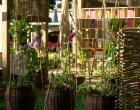 Soirée-Jardins-Jardin-2015-57w